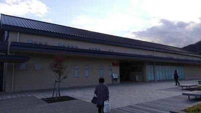 伊豆箱根鉄道駿豆線15