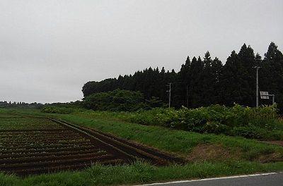 十和田観光電鉄14