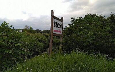 宗谷本線02_20