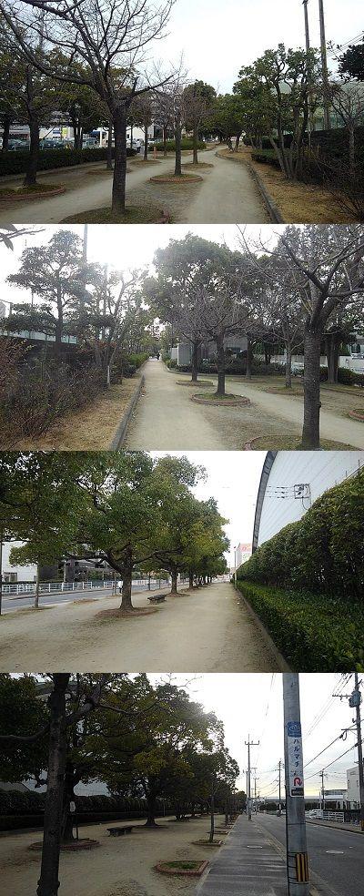 勝田線18