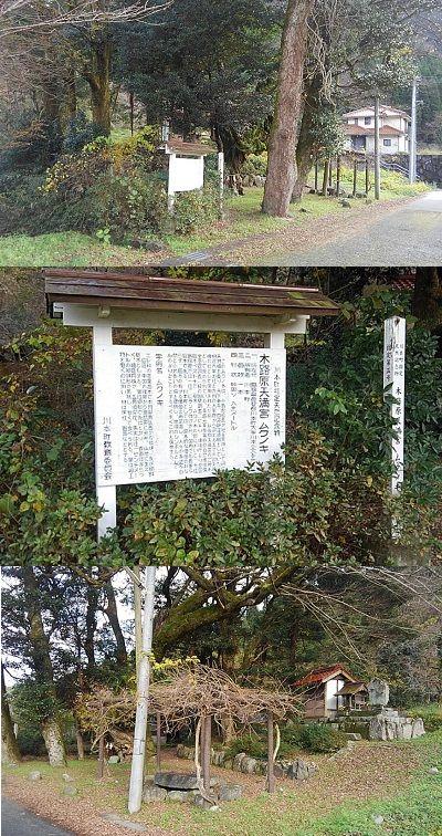 三江線b46