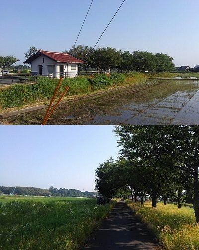 倉吉線34