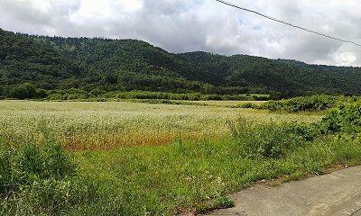 宗谷本線02_a51