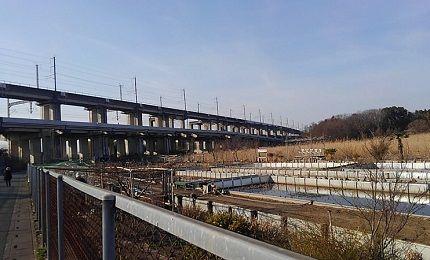 埼玉新都市交通伊奈線76