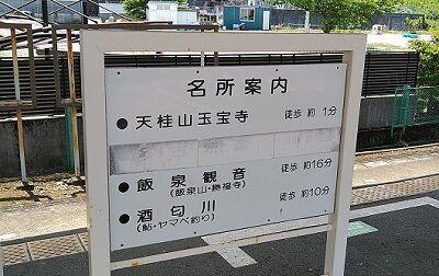 伊豆箱根鉄道大雄山線98