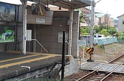伊豆箱根鉄道駿豆線33