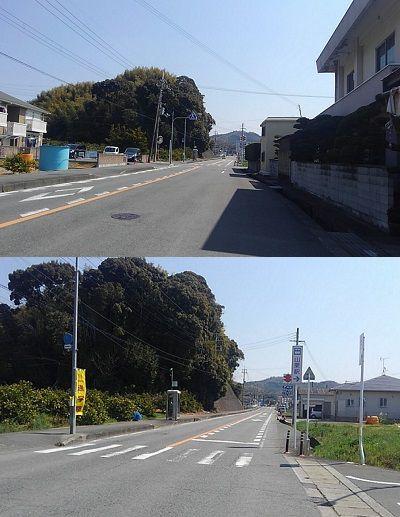 わかやま電鉄貴志川線56