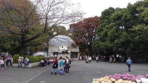 上野懸垂線03