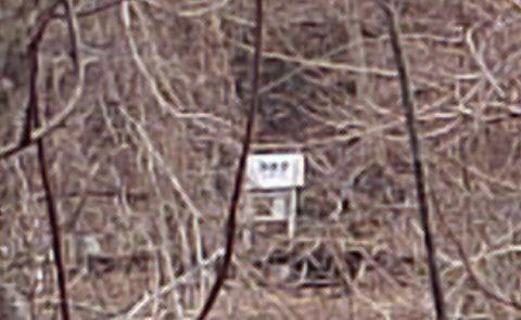 岩泉線25