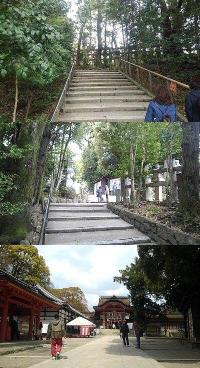 男山ケーブル32