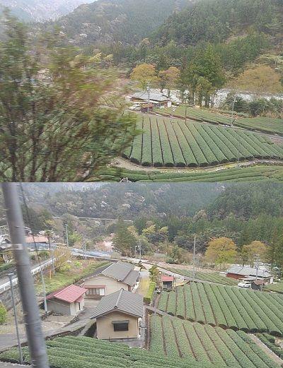 大井川鐵道井川線18