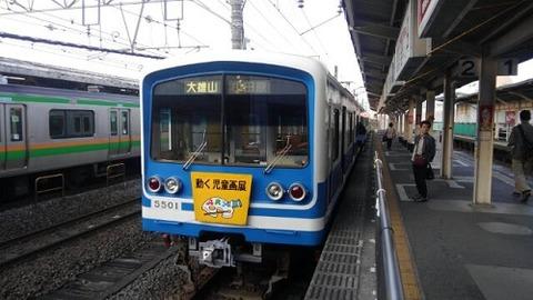 伊豆箱根鉄道大雄山線01
