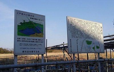 埼玉新都市交通伊奈線77