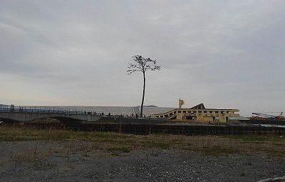 大船渡線29