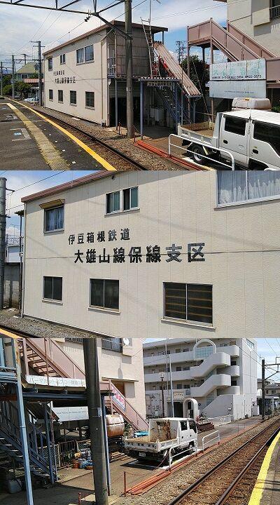 伊豆箱根鉄道大雄山線96