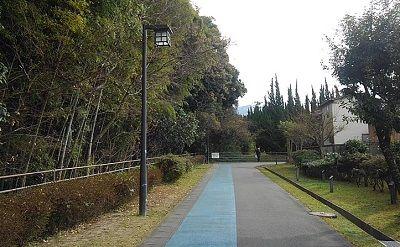 勝田線50