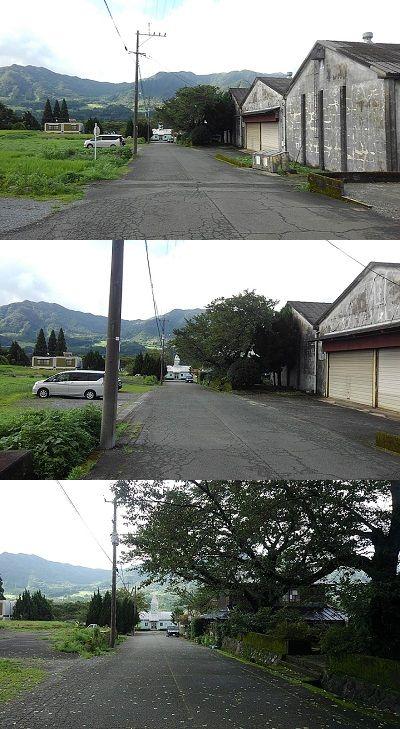 南阿蘇鉄道a15