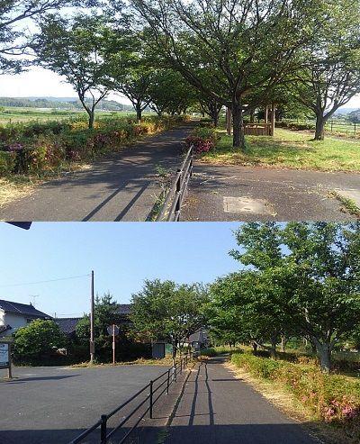 倉吉線33