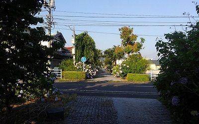 倉吉線14