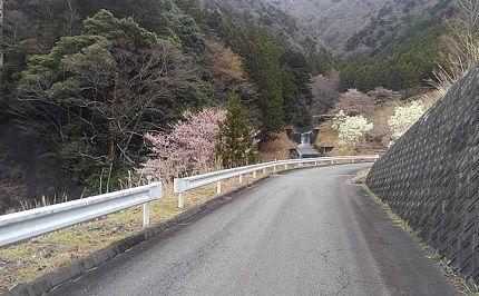 大井川鐵道井川線a55