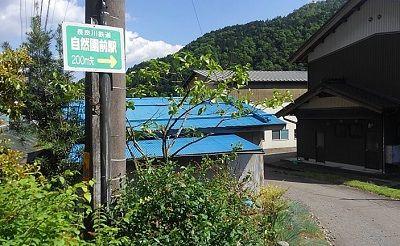 長良川鉄道a87