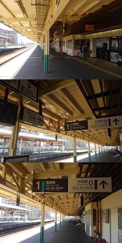 弥彦線02