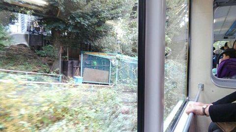 上野懸垂線20