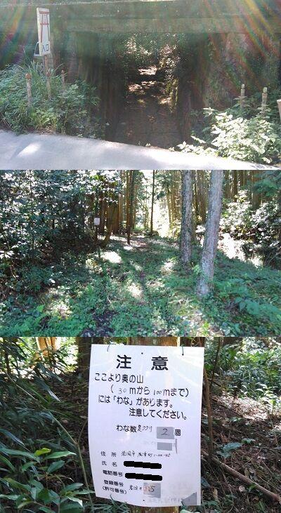 錦川鉄道a08
