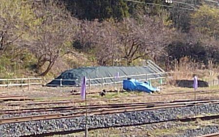 仙山線21