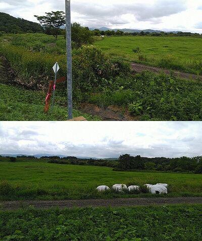 宗谷本線02_c02