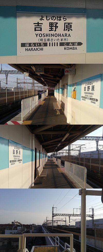 埼玉新都市交通伊奈線53