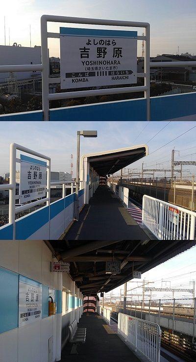 埼玉新都市交通伊奈線54