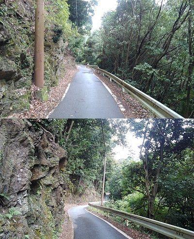 嵯峨野観光鉄道38
