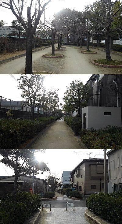 勝田線19