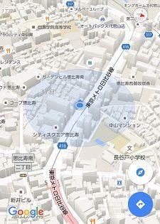 東京メトロ日比谷線42
