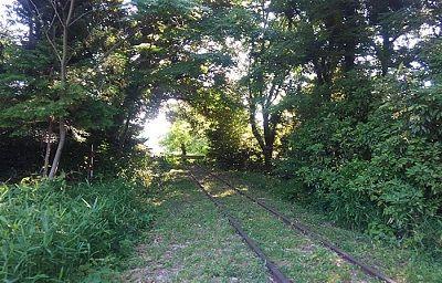 倉吉線56