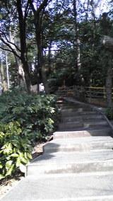 学習院の階段