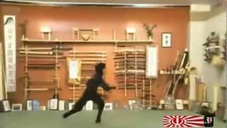 Iran Ninja Women イラン·イスラム共和国のくノ一