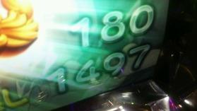 DSC_1599