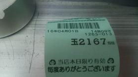 DSC_4648