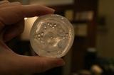 コイン1個