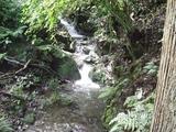 姉妹園谷川