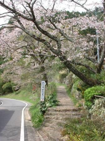 箸折峠入り口