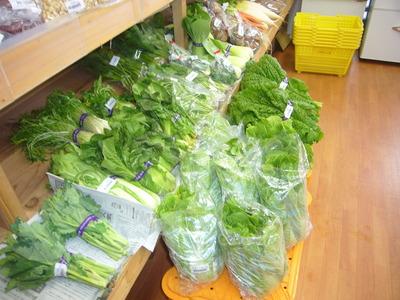 野菜2P1050661