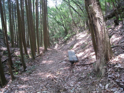 古道2IMG_4087