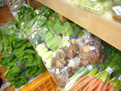 野菜P1050659