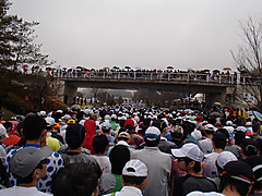 c36011d3.jpg