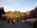 2008年秋京都 081