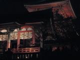 2008年秋京都 025