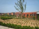 20100706weihai大学